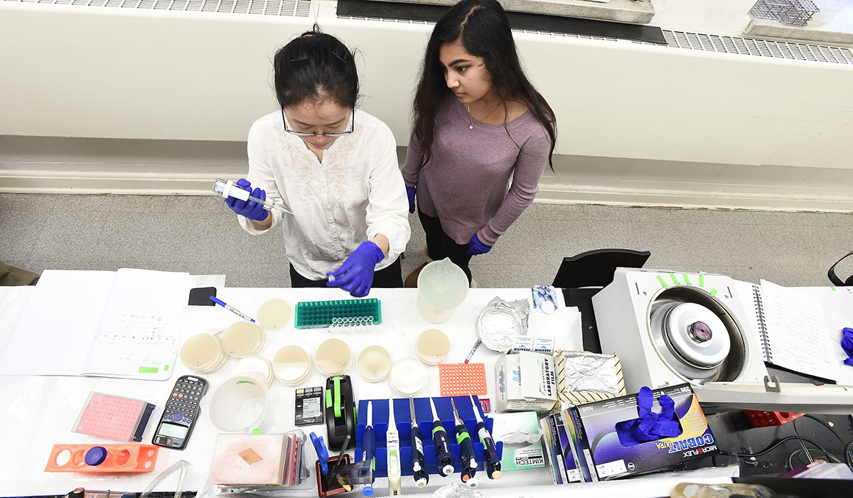Biology students in lab